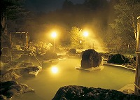 Turbid  Hot-Spring Hotel