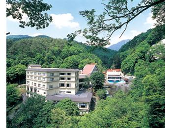 Hotel Shinyu